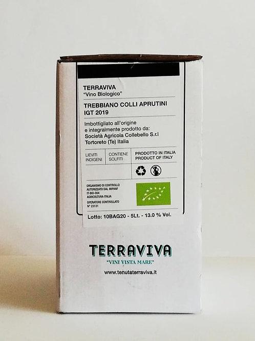 Trebbiano d'Abruzzo IGT 2019 in Bag in Box 5 litri - Tenuta Terravaviva