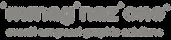 IMMAGINAZIONE logo TRASP-02.png