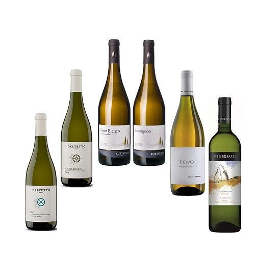 "Offerta""SERATA PESCE"", 6 vini bianchi in abbinamento a piatti a base di pesce"