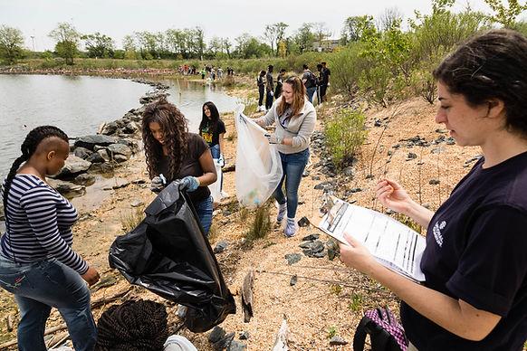 Shoreline Clean-Up Party