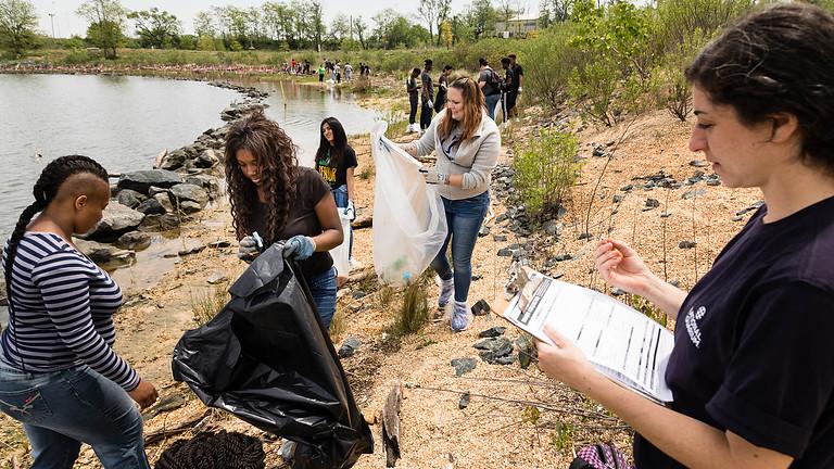 Community Shoreline Clean Up