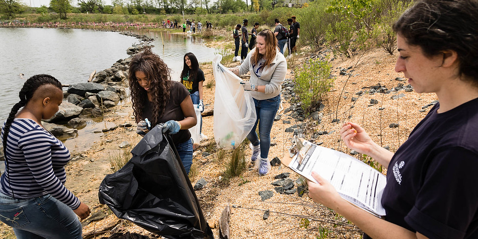 Shoreline Clean-Up Party