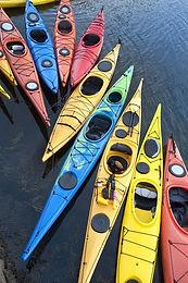 July Kayaking at Masonville Cove