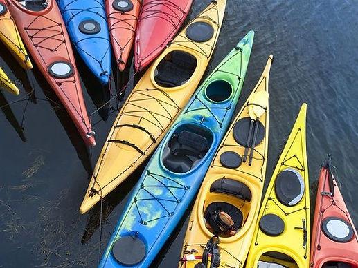 July Masonville Cove Kayaking