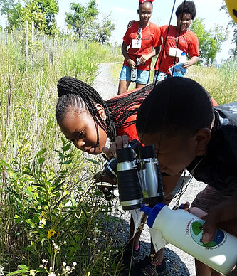 Summer Science and Nature Program