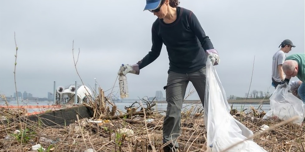 Cleanup at Masonville Cove