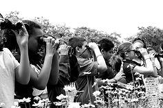 birdwatching_edited.jpg