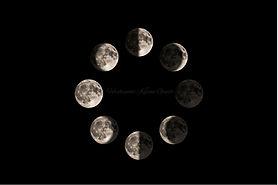 moonfaze.jpg