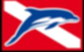 Logo Eco-Divers 1.png