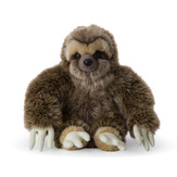 Sitting sloth
