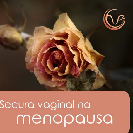 Secura vaginal na menopausa