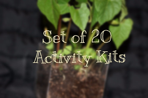 Set of 20 Activity Kits (book not included)