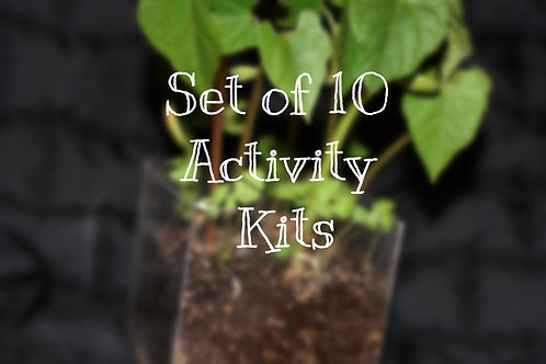 Set of 10 Activity Kits (book not included)