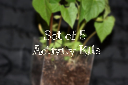 Set of 5 Activity Kits (book not included)