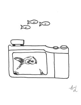 Camera sketch study 2