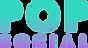 POPsocial_logo_gradient-300x164.png