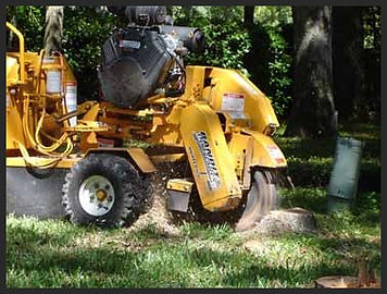 We own and operate all of our stump grinders and equipment.