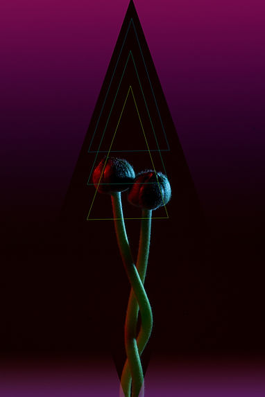sex_and_music.jpg