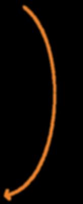 dashed-curvy-line-left-01.png
