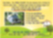 GoBig-Yellow-Letter-Google-Street-View-8