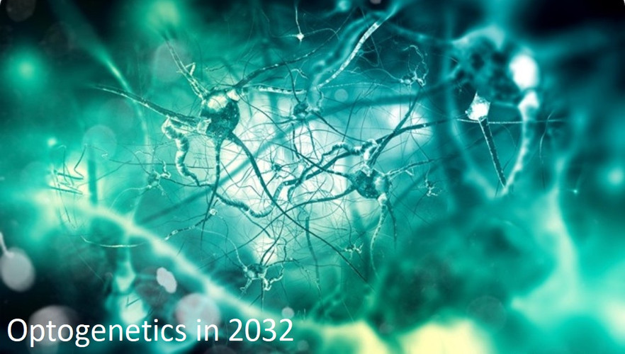 Optogenetics in 2032
