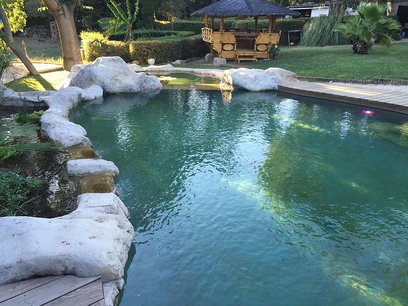 piscine naturelle atelier piscines