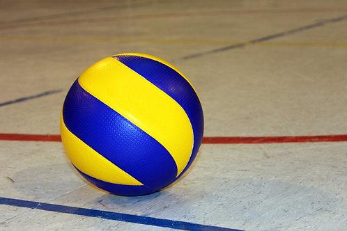 Volleyball Club Team Mandatory Tryout Athlete Registration