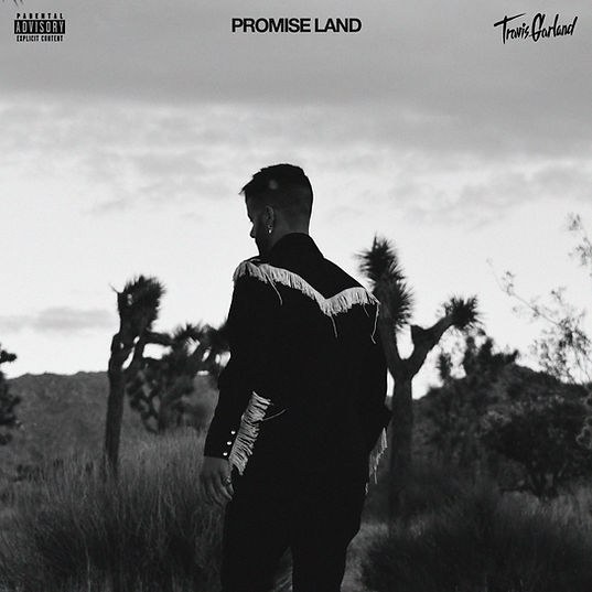 PROMISE LAND (artwork).jpg