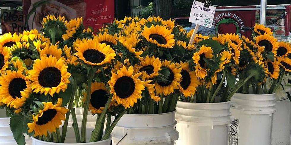 Logan Square Farmers Market: Outdoor 2019 Season!