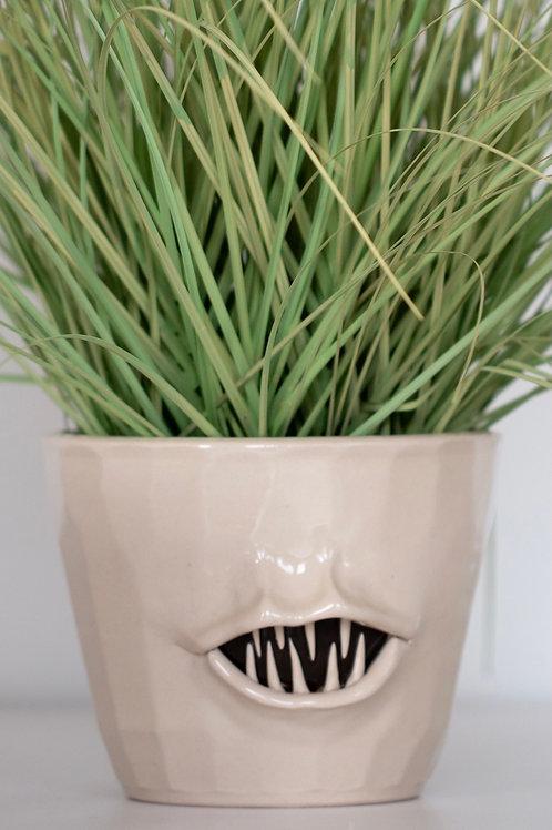 Monster planter  sm/med