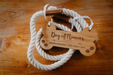dog of honour's collar