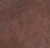 Cover Rust.JPG