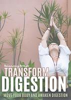 Digestion Program.png