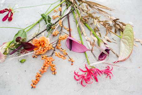 kleinezwaan-kerst2020-spaghettiii-43.jpg