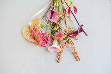 kleinezwaan-kerst2020-spaghettiii-31.jpg