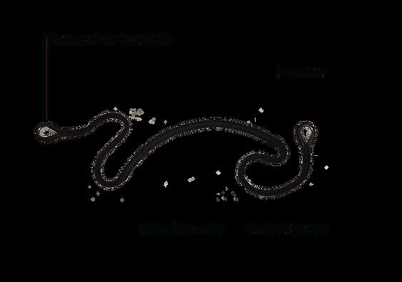 Marinaflex Diagram-16.png