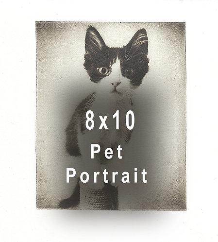 8x10 Custom Pet Etching