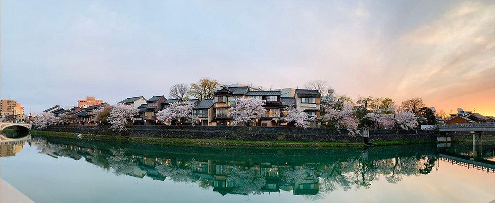 Asono river sakura.jpg