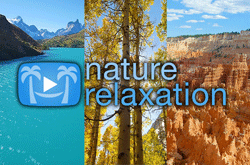 NatureVision TV and Nature Relaxation team up to launch Ultra HD channel with SES