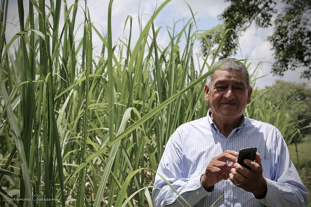 SIAP joins Rezatec on UK Space Agency COMPASS project to improve crop yields for Mexican farmers through the provision of new data