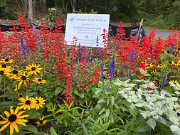 Pollinator Pathway Sunday Sept 13 planti