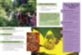 Generic PP Brochure 2020 pg1_Page_2.jpg