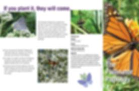 Generic PP Brochure 2020 pg1_Page_1.jpg