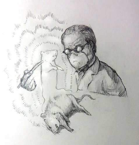 白老鼠的靈魂(網頁測試用虛擬產品)The Soul of a Lab Rat( test object for website)