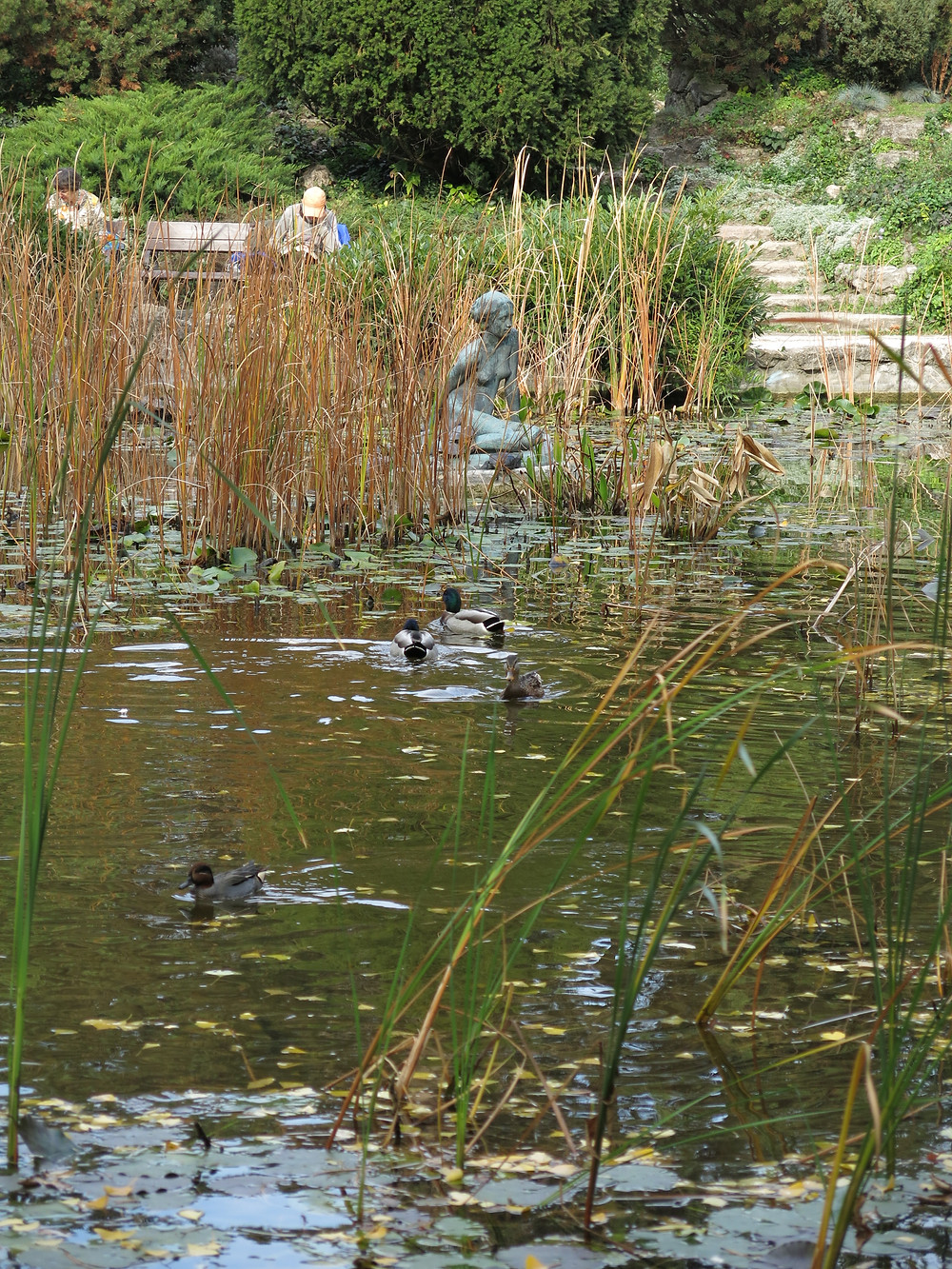 布達佩斯 Margaret Island ,湖中雕塑