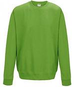 leavers sweatshirt lime.jpg