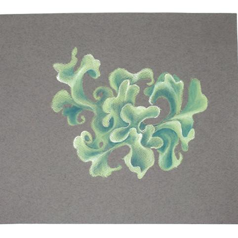Sympoetic Unfurling (from Queer Geometries series)