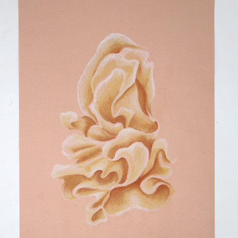 Birth of Venus (from Queer Geometries series)