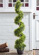 Faux Topiary.jpg