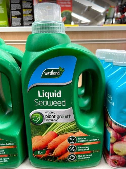 Westland Liquid Seaweed